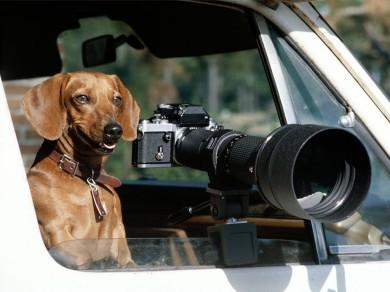 12 motivos para namorar um fotógrafo no dia dos NAMORADOS !!!